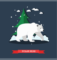 white polar bear in flat vector image