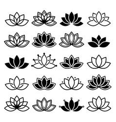 Lotus flower design set yoga collection vector