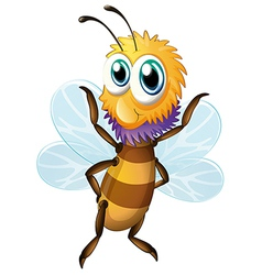 A big bee vector image vector image