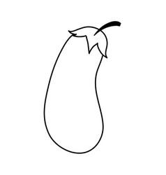 Delicious vegetable eggplant vector