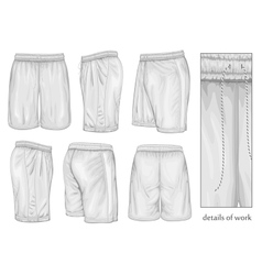 Mens white sport shorts vector