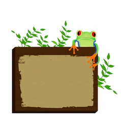 Red eyed tree frog sitting on wood background vector image vector image