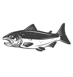 salmon fish icon isolated on white background vector image