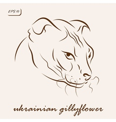 Ukrainian gillyflower cat vector