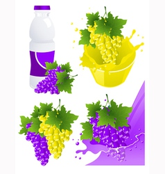 Vine products vector image vector image