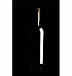 Wine bottle vector illustratio vector