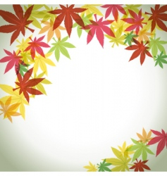 autumn foliage background vector image vector image