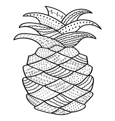 Pineapple whimsical line art coloring book for vector