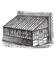 Plant house vintage vector