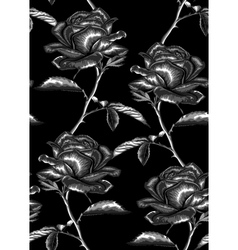 Seamless background with gray roses vector
