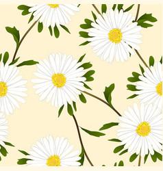 White aster flower on ivory beige background vector