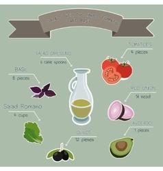 salad recipe infographics vector image