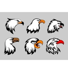 Bald eagle mascot heads vector