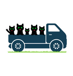 Black cats ride in a truck vector