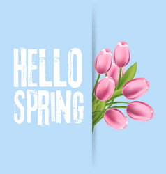 Hello spring lettering with hand drawn letters vector