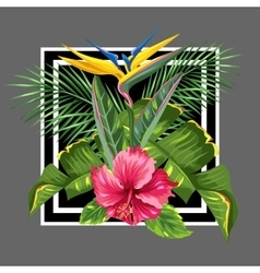Background with tropical leaves and flowers palms vector