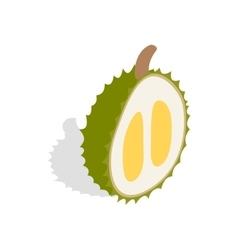 Durian icon isometric 3d style vector
