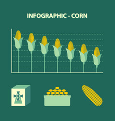 Infographic declining production of corn vector