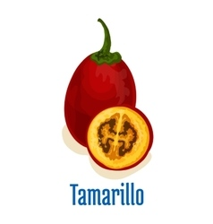 Tamarillo fruit icon emblem vector