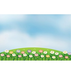 A view of the hill with flowers vector