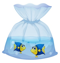 A plastic bag with two fishes vector image vector image