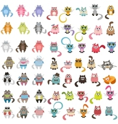 big set of cats vector image vector image