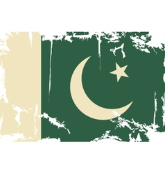 Pakistani grunge flag vector