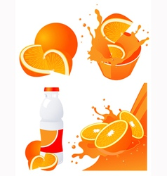 Orange products vector image vector image