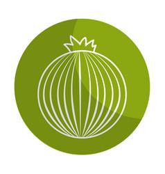 Sticker fresh onion organ vegetable food vector