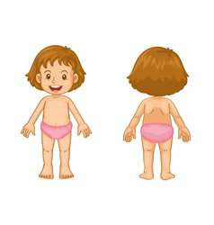 Toddler front and back vector image vector image