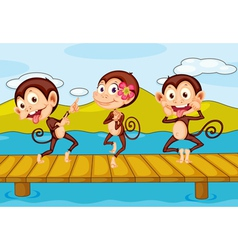 3 monkeys vector