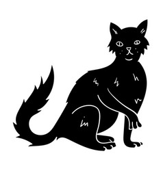 British semi-longhair icon in black style isolated vector