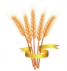 wheat ears and golden ribbon vector image vector image