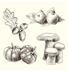 Autumn food set sketch vector