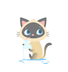 cute baby kitten sitting holding a milk bottle vector image