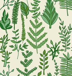 Herbal pattern hand drawn vector
