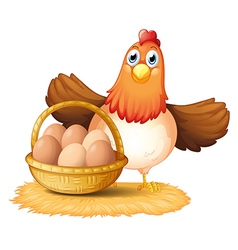 A hen and a basket of egg vector image vector image