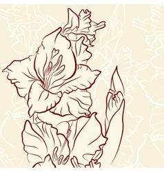 Gladiolus flower line vector