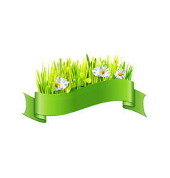 Grass and big flowers in green ribbon vector