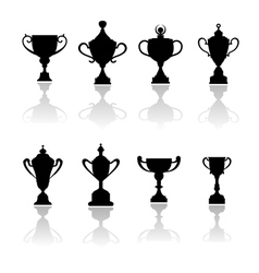Sport trophies awards and cups vector