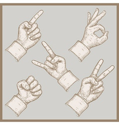 Five hands vector