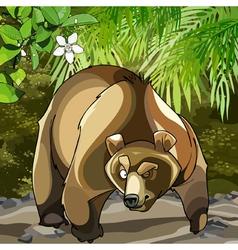 cartoon big bear in the woods that is suspected vector image vector image