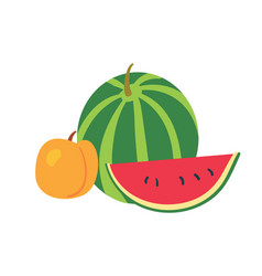 watermelon and peach on white background vector image vector image