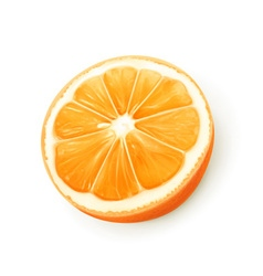 Orange fruit vector