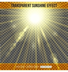 Sunshine effect over transparent background vector