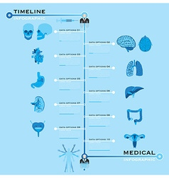 Timeline health and medical infographic vector
