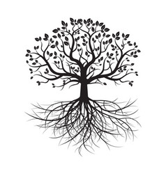 Black old tree and roots vector