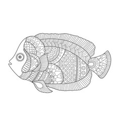 Angel fish coloring book vector