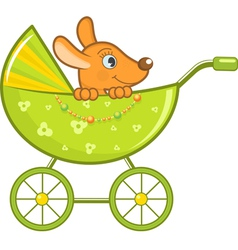 baby animal in stroller vector image vector image