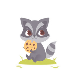 Cute baby raccoon sitting eating a cookie vector